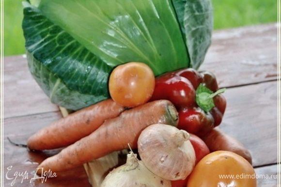 И, если следовать рецепту, то понадобится нам еще набор овощей.