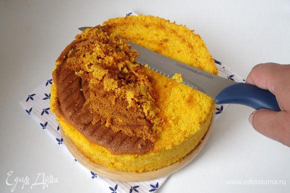 Сборка торта: Верх бисквита «побрить» ножом, убрав с него запеченную корочку.