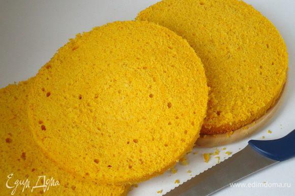 Бисквит разрезать на три коржа: верхний – будет чуть тоньше, и пойдет на обсыпку торта, два остальных коржа должны быть одинакового размера.