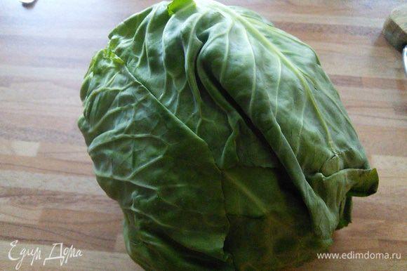 Тем временем моем капусту, в оригинале савойская, она же вирсинг, но мне попалась симпатичный кочанчик обычной капусты зелёного цвета.