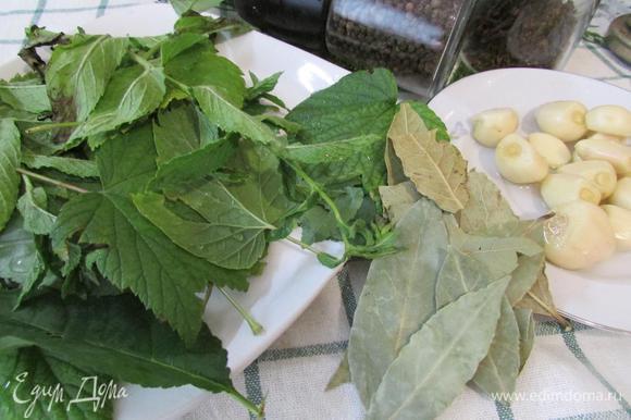 Подготовить специи (у меня листья вишни, смородины, тархун, лавровый лист, перец черный горошком, перец душистый, чеснок, кориандр). Специи можно брать по вкусу, но вот листья смородины и вишни обязательны в этом рецепте.