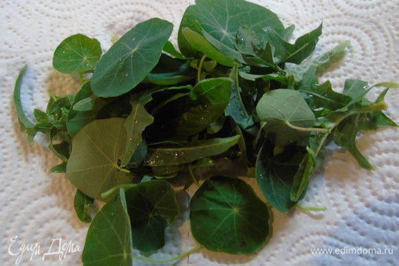 Зелень салата и листья настурции вымыть и обсушить на бумажном полотенце.