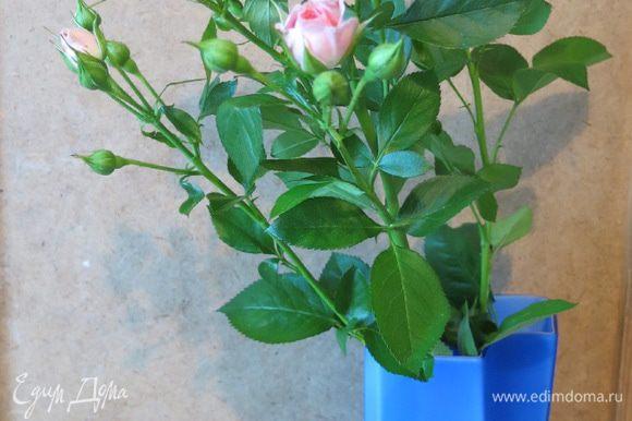 """Покупаем самую красивую и свежую ветку кустовых роз. Включаем """"Вальс цветов"""". Приступаем! Выбираем самые красивые бутончики на ветке. Хорошенько моем их кипячённой водой."""