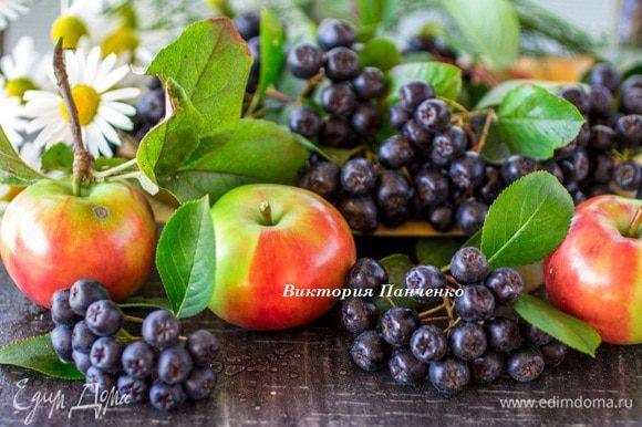 Яблоки помыть и нарезать дольками, рябину помыть и снять с веточек.