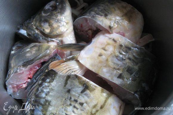 На лук положить две рыбьих головы, несколько кусочков рыбы.