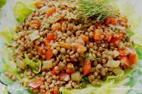 Подавать такой салат красиво и вкусно на листьях салата. Просто вымыть салат и порвать его руками. Сверху выложить теплый салат из чечевицы. Кушать сразу.