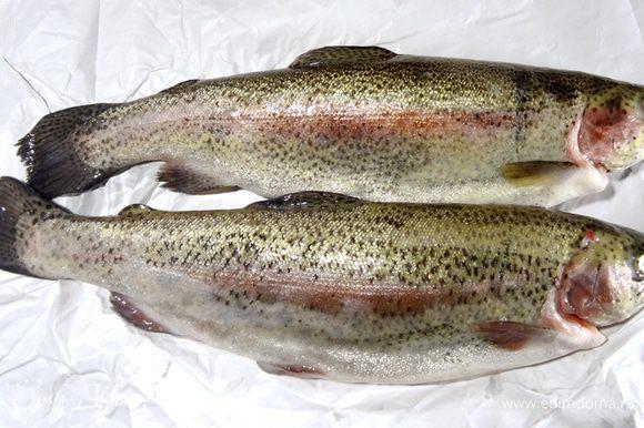 Как выбрать свежую форель? Визуально рыба должна выглядеть, словно только что выловленной из моря. Скрученный и засохший хвост считается одним из главных признаков длительного хранения форели. Чешуя должна быть равномерной и быть без повреждений. Жабры должны быть нежно-розового цвета, без слизи, глаза прозрачные, тушка без вздутий и запаха — такую рыбку смело можно покупать! Рыбу почистить, удалить жабры, промыть и просушить салфеткой.