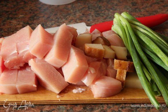 Куриное филе и сало режем кусочками, зеленый лук моем и чистим