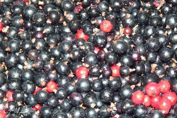 По мере созревания добавлять ягоды: чистую смородину добавить в банку и залить водкой.