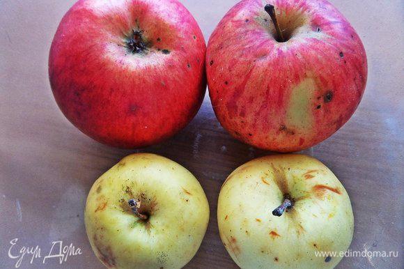 Готовим яблоки.