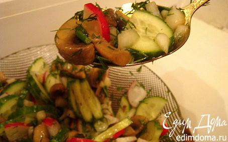 Рецепт Салат с жареными шампиньонами и редисом
