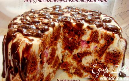 Рецепт Шоколадный торт с творожно-йогуртовым кремом