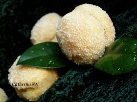 Персики (Peaches with Cream)