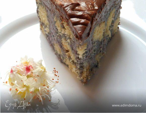 Торт с чернично-кокосовым муссом и шоколадом