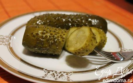 Рецепт Огурцы солено-броженые