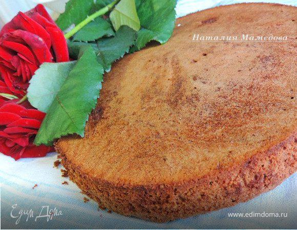 Шоколадный бисквит от Карла Шумахера