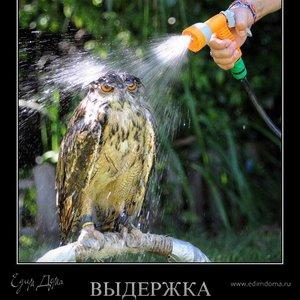 Meshalkin