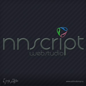 nnscript.ru