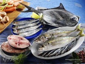 Рыбный фестиваль Кинго Мацури в Японии