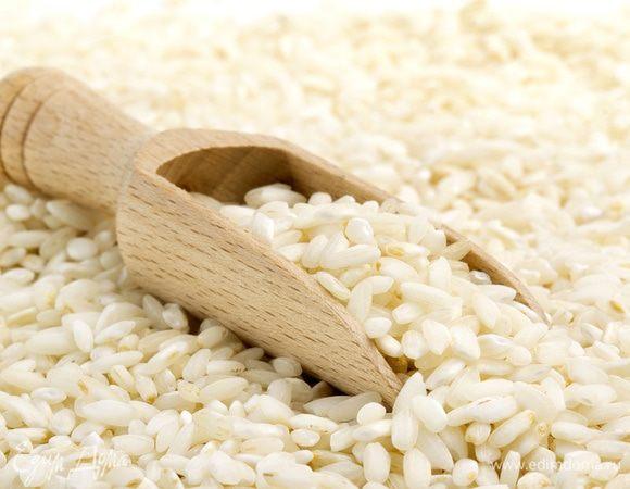 Рис италика