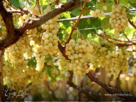 Вино белое сладкое