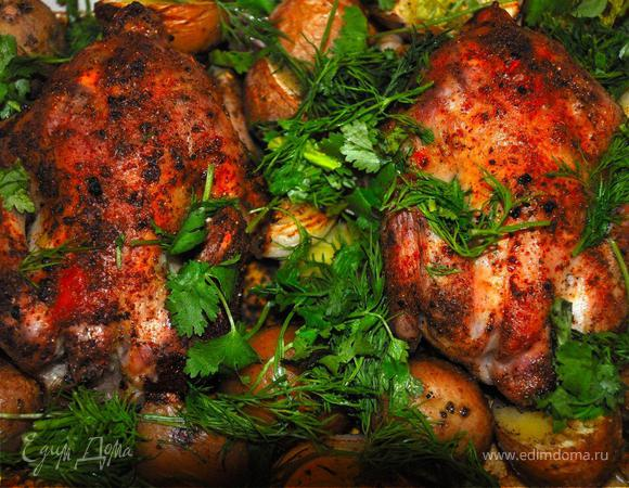 Жаркое из цыплят с печеным картофелем. (Pollo Arrosto Con Patate Al Forno)