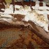 """Торт """"Шоколад с начинкой"""""""