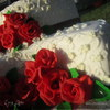 """Торт """" Красные розы на белом"""""""