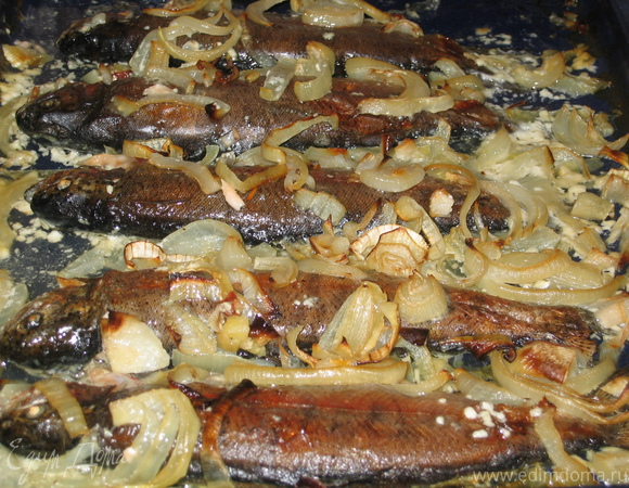 Микижа в сметанно-луковом соусе с рисом и карри