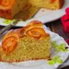 Пирог с фундуком и абрикосами