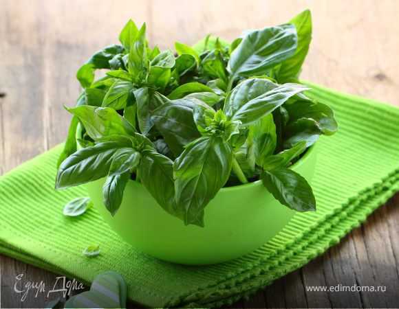 Применение базилика в кулинарии рецепт