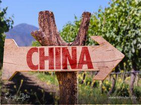 Карта вин Китая: необычные открытия