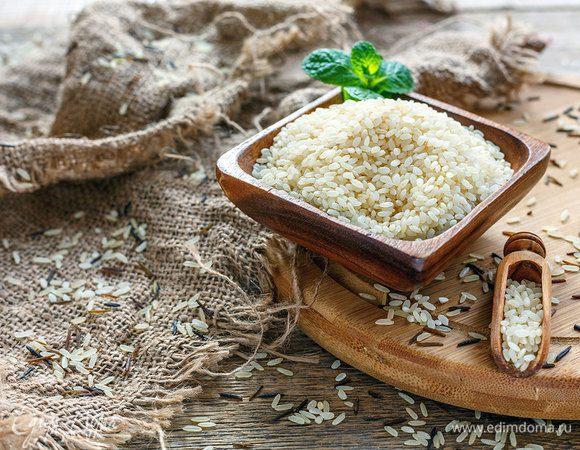 Высокие технологии: как выращивают рис в России