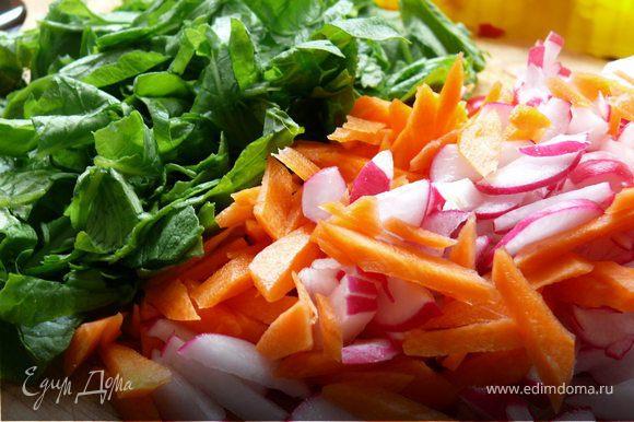 Редис отделить от ботвы, помыть, почистить. Ботву тоже тщательно промыть, обсушить.Морковь почистить, помыть. Овощи порезать соломкой, зелень посечь не очень крупно.
