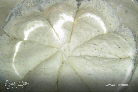 После растойки, тесто делим на 8-10 частей, каждую часть еще раз вымешиваем.