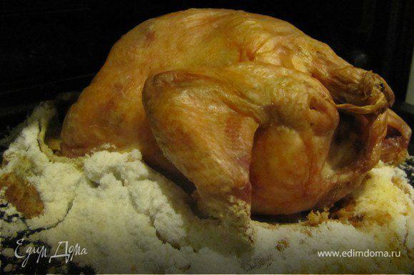На противень положить курицу, подоткнуть под нее соль. Отправить в духовку часа на 2. Можно меньше. Смотрите сами, как станет золотистой - готова. Шкурка получается хрустящей, но я ее счищаю и выбрасываю - под ней вкуснейшее, нежное, нежирное мясо. И совершенно не пересоленое))) Чего я так в первый раз боялась)