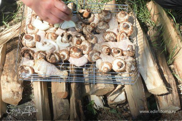 Берем грибочки моем и чистим (муж мой когда готовит не чистит). Хорошо-хорошо - прихорошо солим (если плохо посолить грибы будут никакие, перчим и укладываем в барбекюшницу (гриль) лучше вместе с мясом, а можно и без мяса))