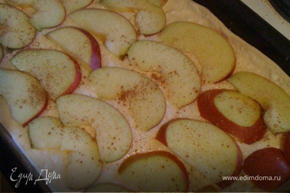 Украшаем яблоками, посыпаем корицей (тоже по вкусу).