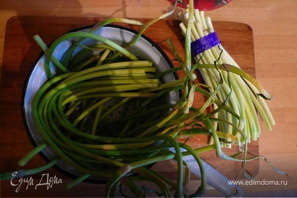 Подготавливаем побеги чеснока. Для приготовления берем только темно-зеленую часть. Цветущие стрелки срезаем, также срезаем и нижнюю белую часть.