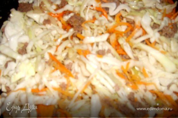 Добавить нарезанную капусту, соль перец и тушить еще минут 5