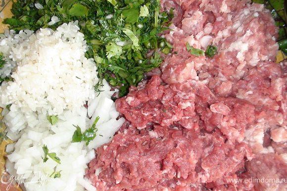 Порготовить ингредиенты: мясо пропустить через мясорубку, лук и зелень мелко порезать, рис промыть. Мясо, рис, лук, зелень, соль, перец хорошо перемешать, отбить.