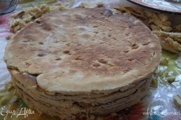 Когда торт смазан, придать ему ровную форму, обрезав неровные края.