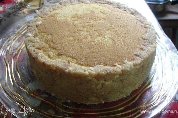 """""""Картошка"""". Остатки бисквита измельчить, добавить 50 г размягченного сливочного масла и 30 г сгущенного молока, хорошо перемешать и ровно обмазать края торта №2."""