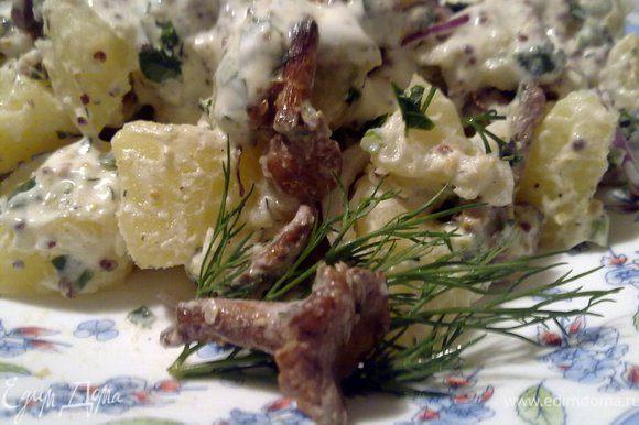 Смешать горчицу со сметаной, укропом. Красный лук тонко нарезать полукольцами. Аккуратно перемешать картошку, жареные грибы, лук и сметанный соус. Подавать сразу же. Но и в холодном виде тоже хорошо.