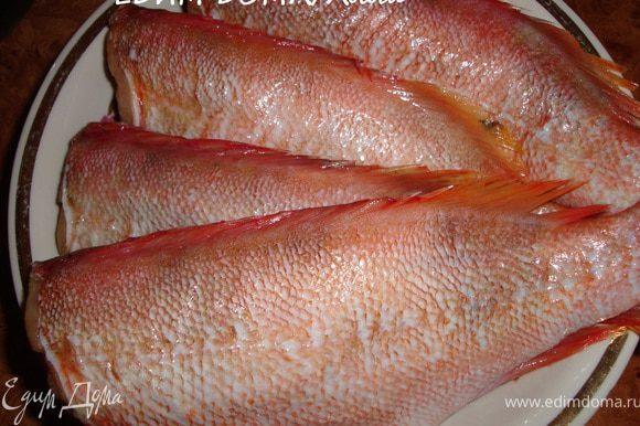 Рыбу оттаять (если заморожена), почистить, помыть, обсушить. Натереть солью со всех сторон, в т.ч. и внутри.