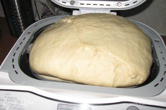 Тесто замесила в хлебопечке.