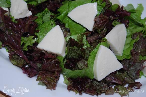 Листья салата нарежем крупно, выложим на них крупно порезанную моцареллу.