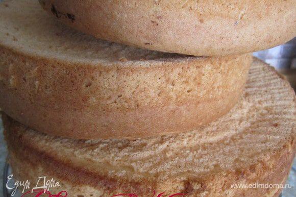 Приготовить бисквит по рецепету в трех формах 18,18,20