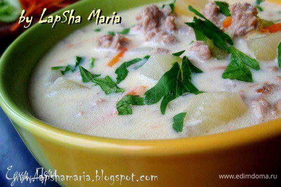 Готовый суп разлить по тарелкам, добавить свежую порубленную петрушку и можно наслаждаться. Приятного аппетита и с праздником ваших мужчин!