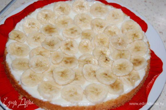 Собираем торт. На один корж выложить половину крема, сверху - нарезанный кружочками банан...